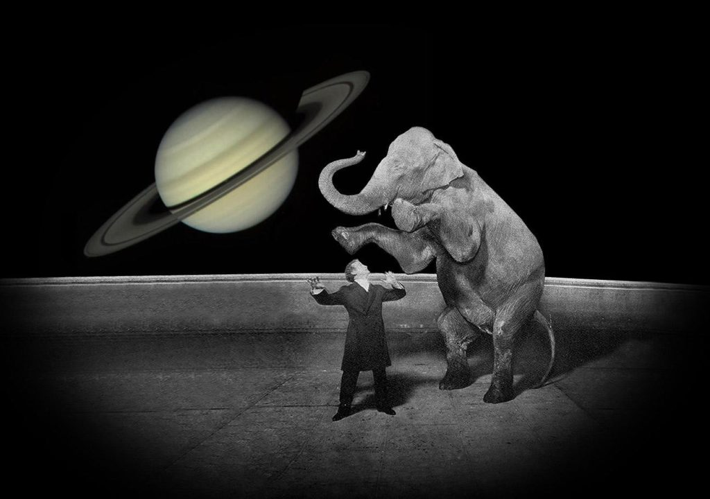 Houdini, Jennie the Elephant, and Saturn